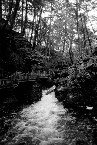 Fine Art Photograph Bushkill Falls PA Pennsylvania Waterfall